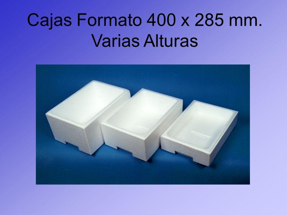 Cajas Formato 400 x 285 mm. Varias Alturas