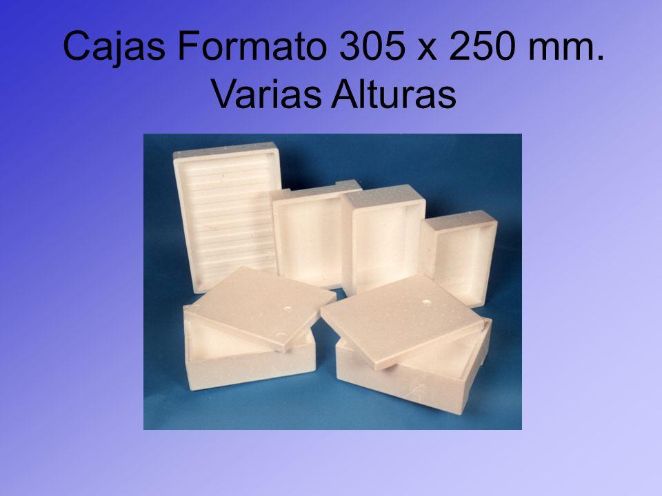 Cajas Formato 305 x 250 mm. Varias Alturas