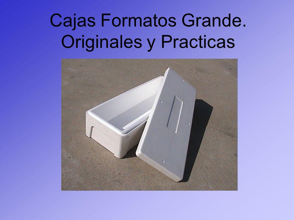 Cajas Formatos Grande. Originales y Practicas