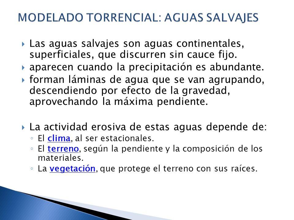 MODELADO TORRENCIAL: AGUAS SALVAJES