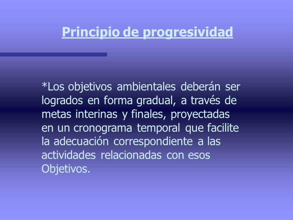 Principio de progresividad