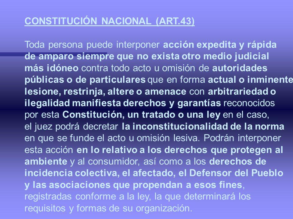CONSTITUCIÓN NACIONAL (ART.43)
