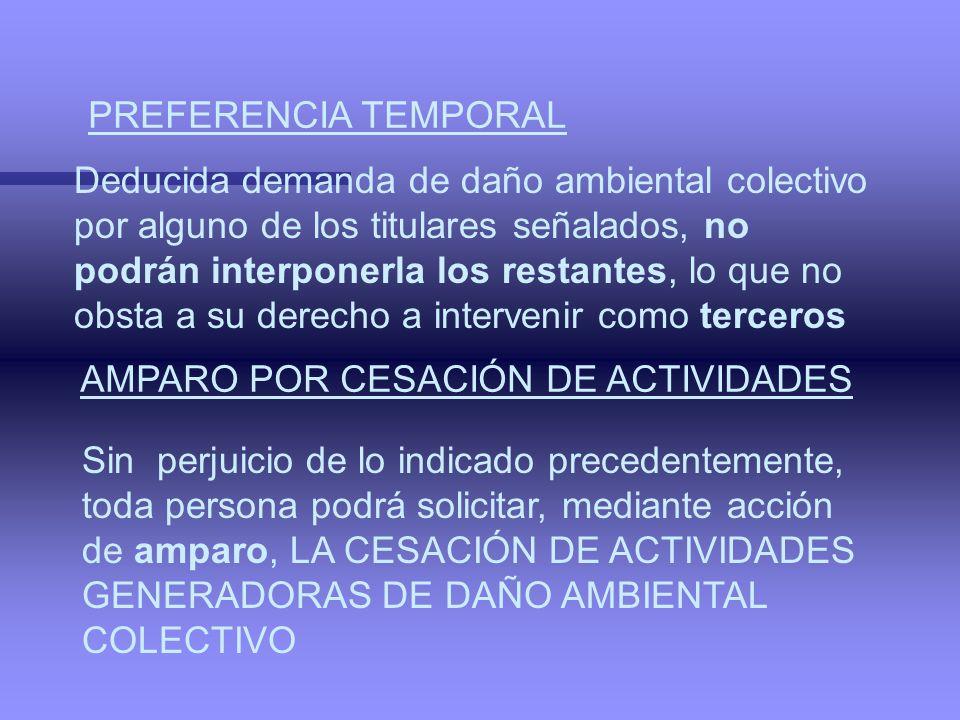PREFERENCIA TEMPORAL Deducida demanda de daño ambiental colectivo.