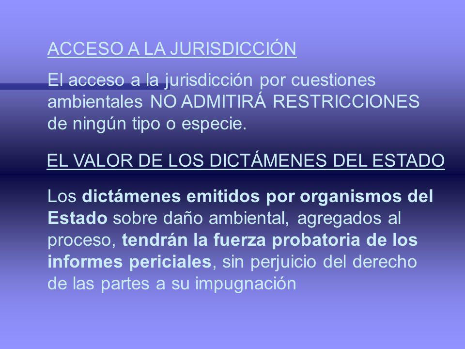 ACCESO A LA JURISDICCIÓN