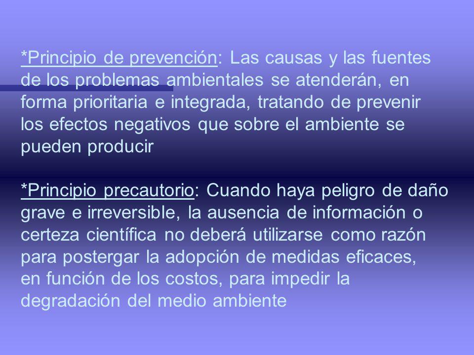 *Principio de prevención: Las causas y las fuentes