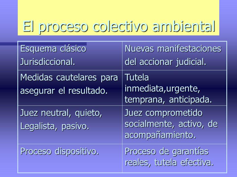 El proceso colectivo ambiental