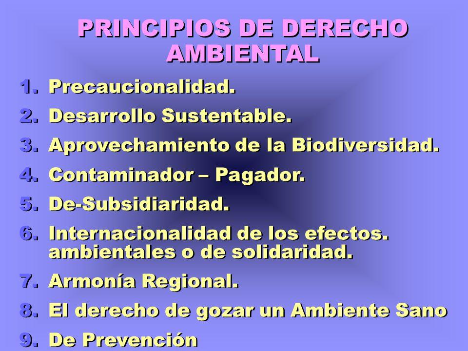 PRINCIPIOS DE DERECHO AMBIENTAL