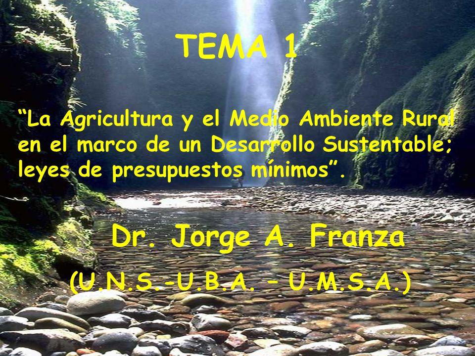 TEMA 1 Dr. Jorge A. Franza (U.N.S.-U.B.A. – U.M.S.A.)