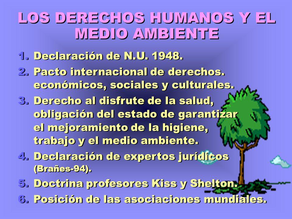 LOS DERECHOS HUMANOS Y EL MEDIO AMBIENTE