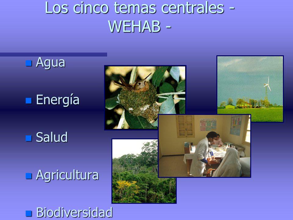 Los cinco temas centrales - WEHAB -