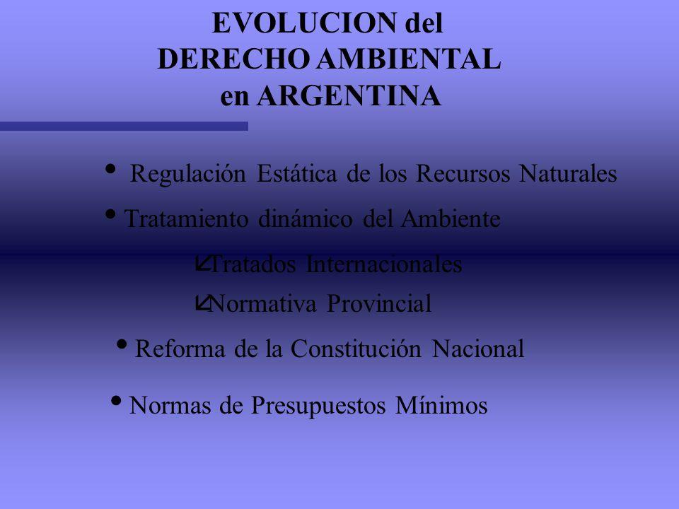 EVOLUCION del DERECHO AMBIENTAL en ARGENTINA
