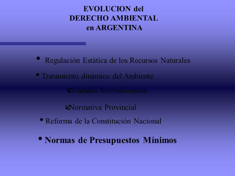 Regulación Estática de los Recursos Naturales