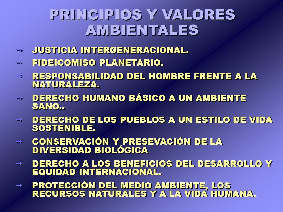 PRINCIPIOS Y VALORES AMBIENTALES
