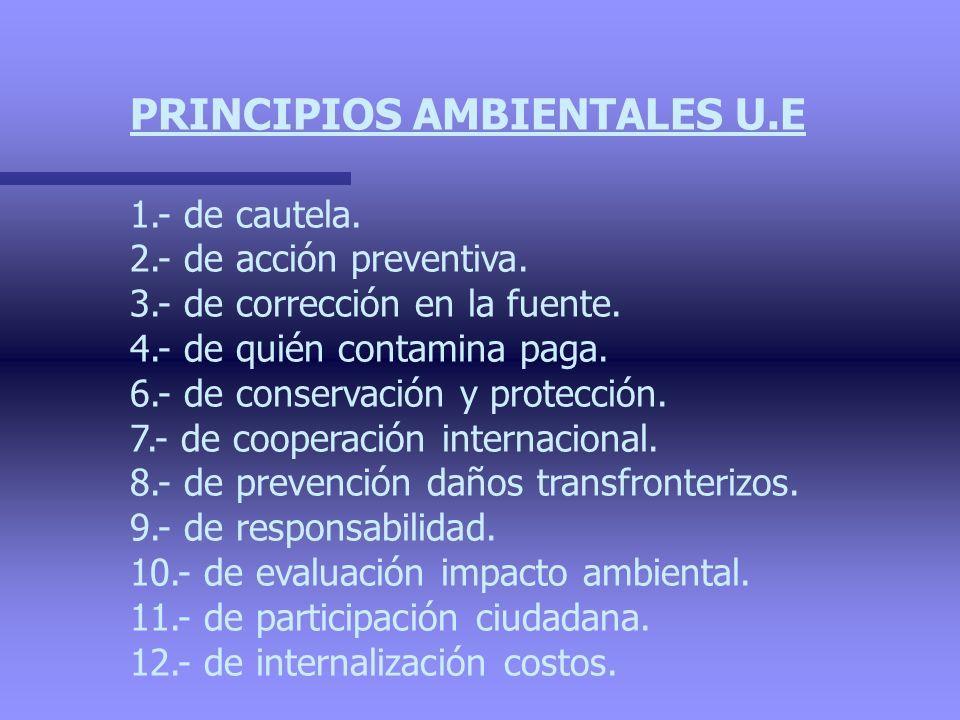 PRINCIPIOS AMBIENTALES U.E