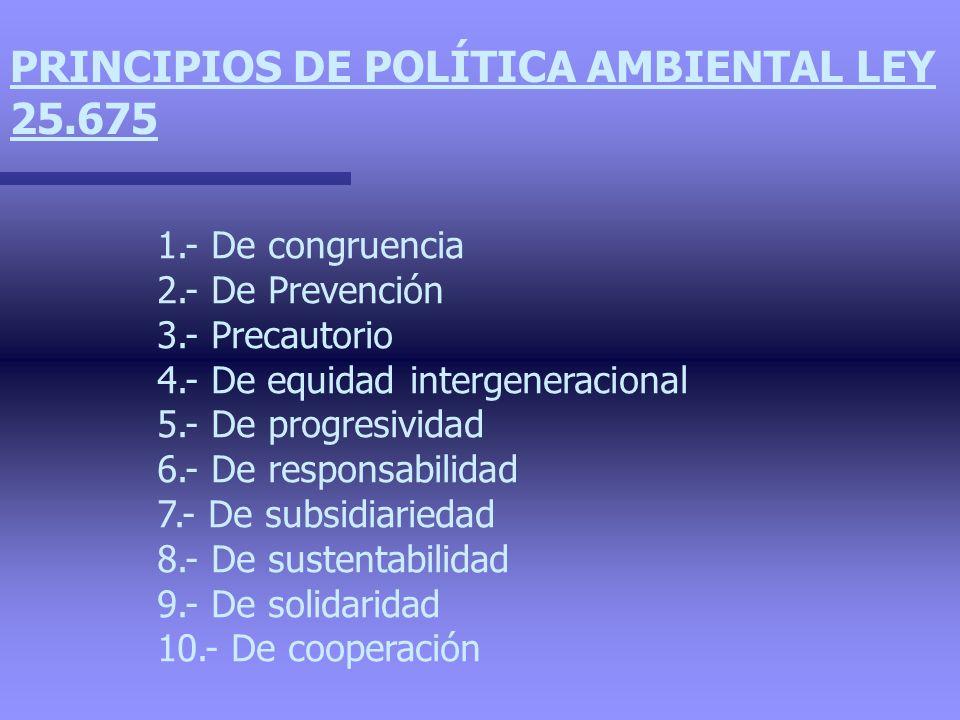 PRINCIPIOS DE POLÍTICA AMBIENTAL LEY 25.675