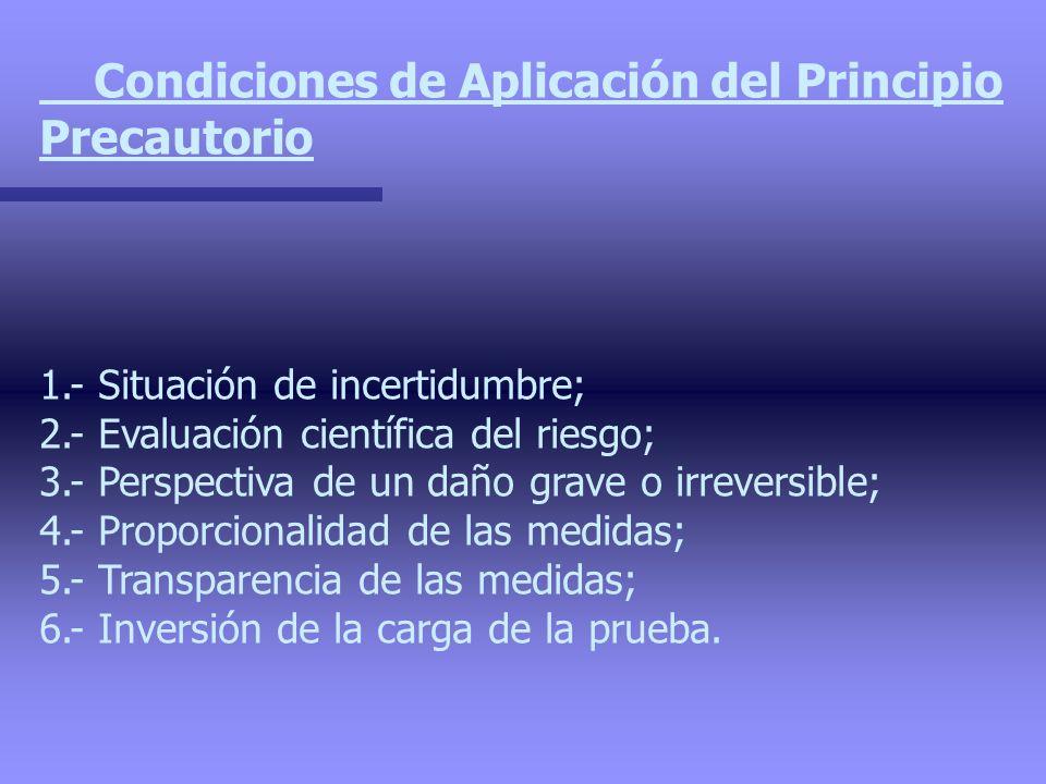 Condiciones de Aplicación del Principio Precautorio