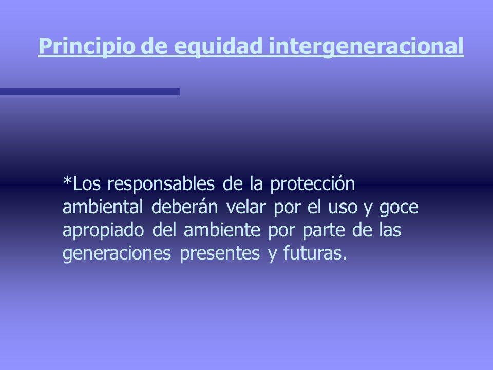 Principio de equidad intergeneracional