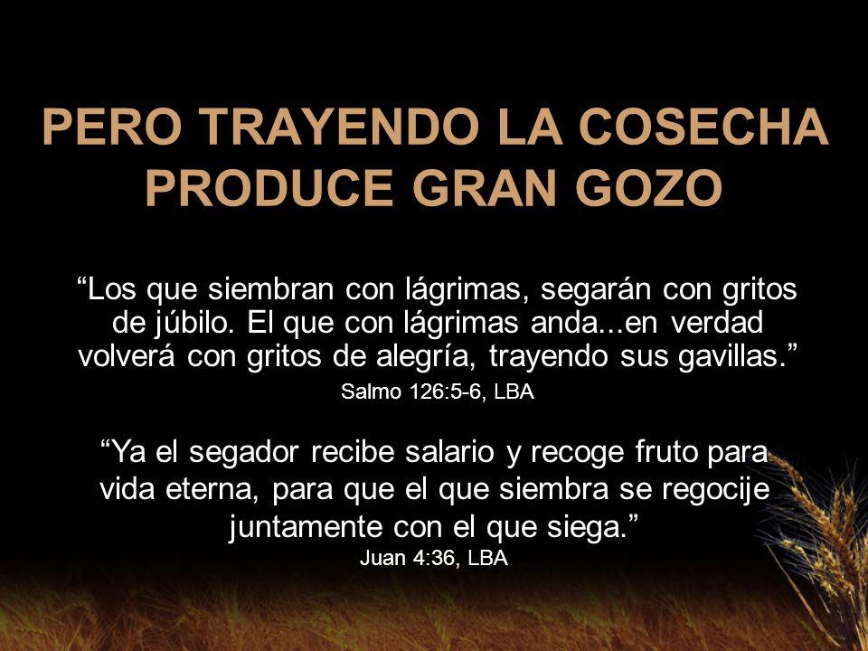 PERO TRAYENDO LA COSECHA PRODUCE GRAN GOZO