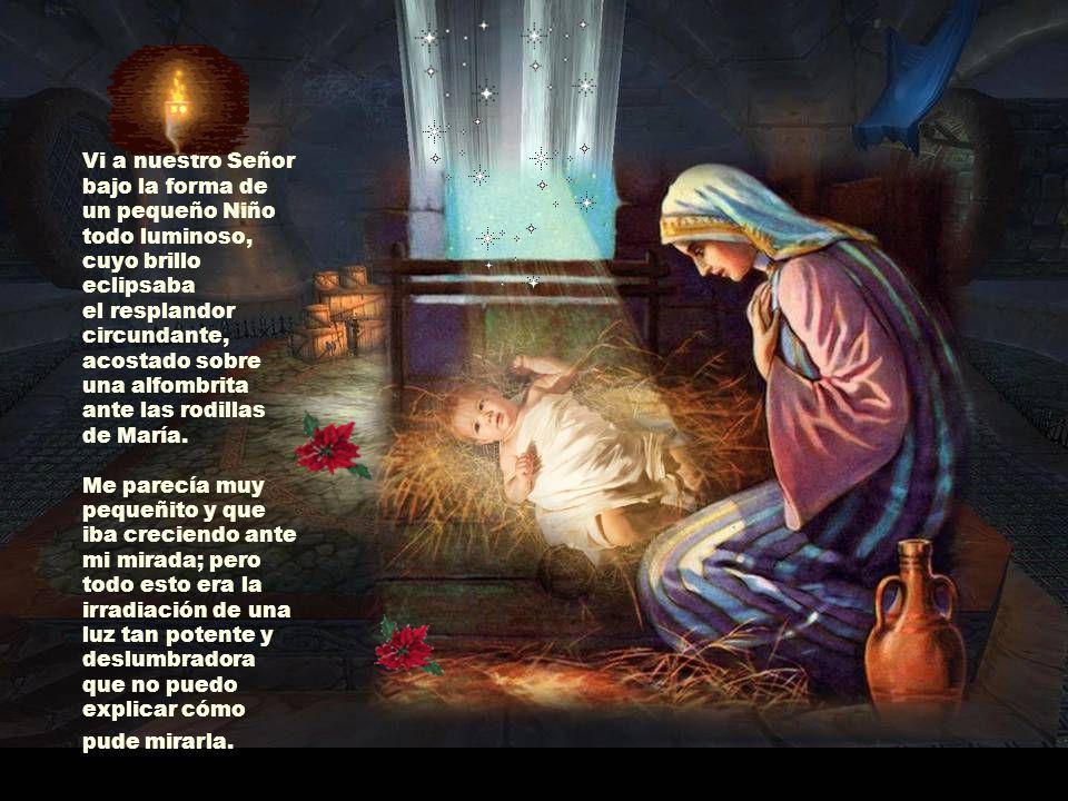Vi a nuestro Señor bajo la forma de un pequeño Niño todo luminoso, cuyo brillo eclipsaba