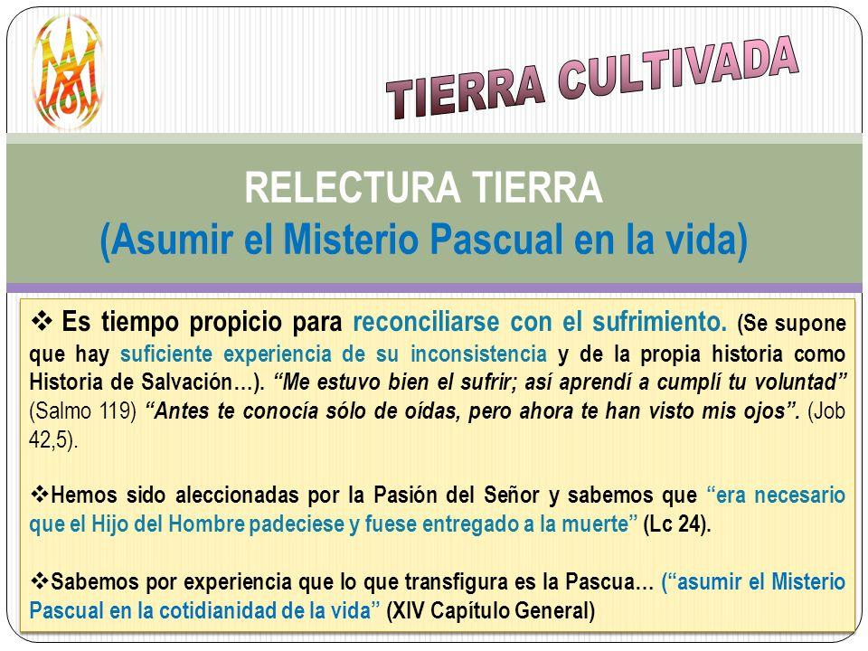 RELECTURA TIERRA (Asumir el Misterio Pascual en la vida)
