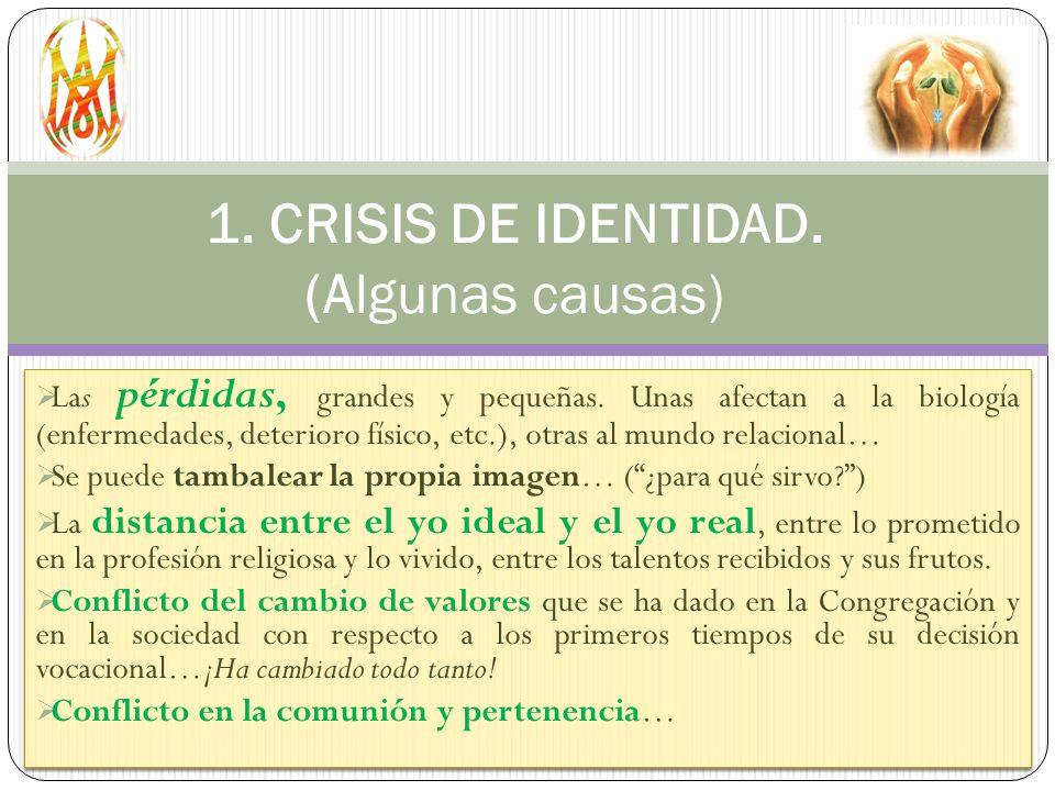 1. CRISIS DE IDENTIDAD. (Algunas causas)