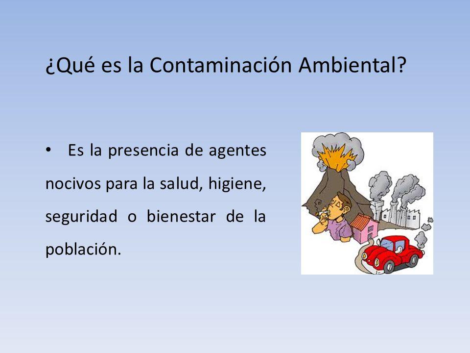 ¿Qué es la Contaminación Ambiental