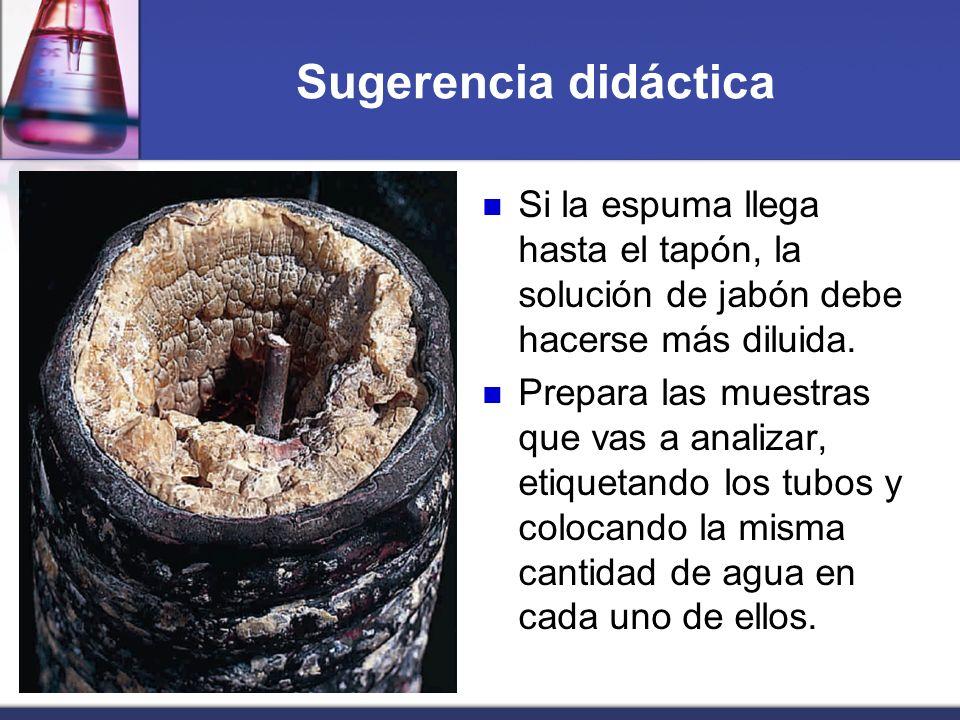 Sugerencia didáctica Si la espuma llega hasta el tapón, la solución de jabón debe hacerse más diluida.