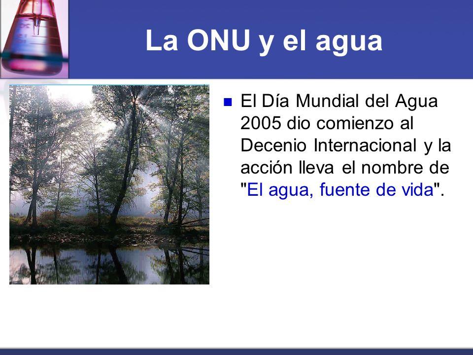 La ONU y el aguaEl Día Mundial del Agua 2005 dio comienzo al Decenio Internacional y la acción lleva el nombre de El agua, fuente de vida .