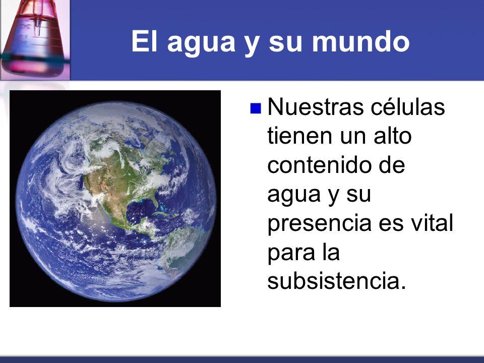 El agua y su mundo Nuestras células tienen un alto contenido de agua y su presencia es vital para la subsistencia.