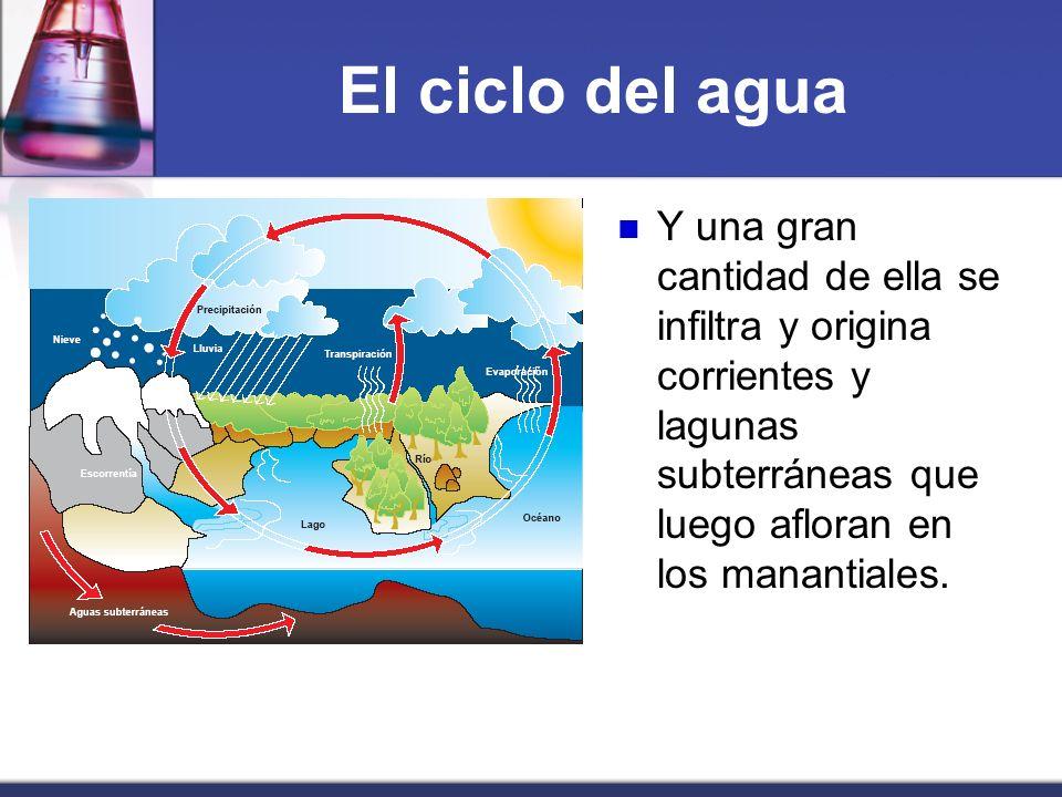 El ciclo del aguaY una gran cantidad de ella se infiltra y origina corrientes y lagunas subterráneas que luego afloran en los manantiales.