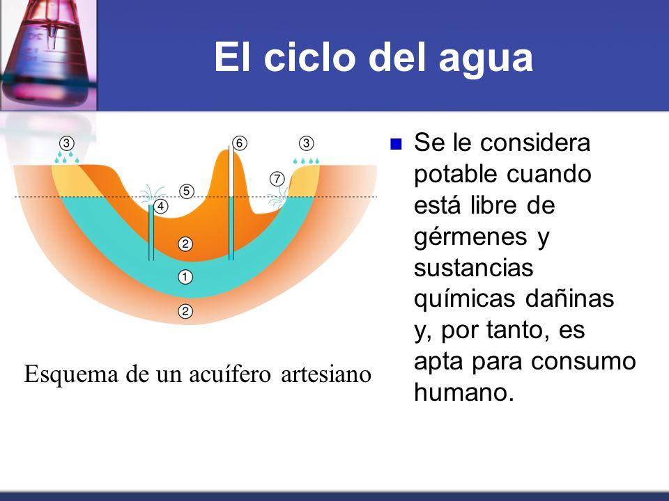 El ciclo del agua Se le considera potable cuando está libre de gérmenes y sustancias químicas dañinas y, por tanto, es apta para consumo humano.