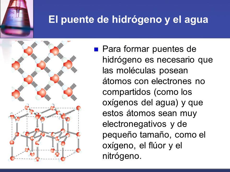 El puente de hidrógeno y el agua