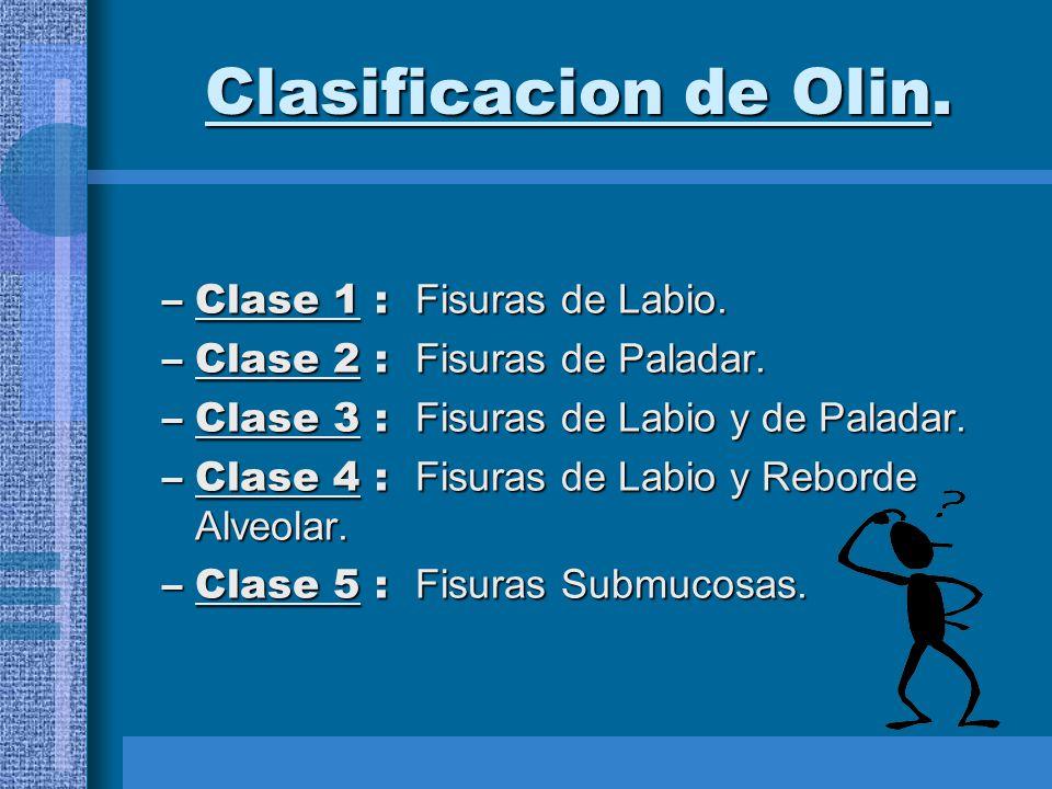 Clasificacion de Olin. Clase 1 : Fisuras de Labio.