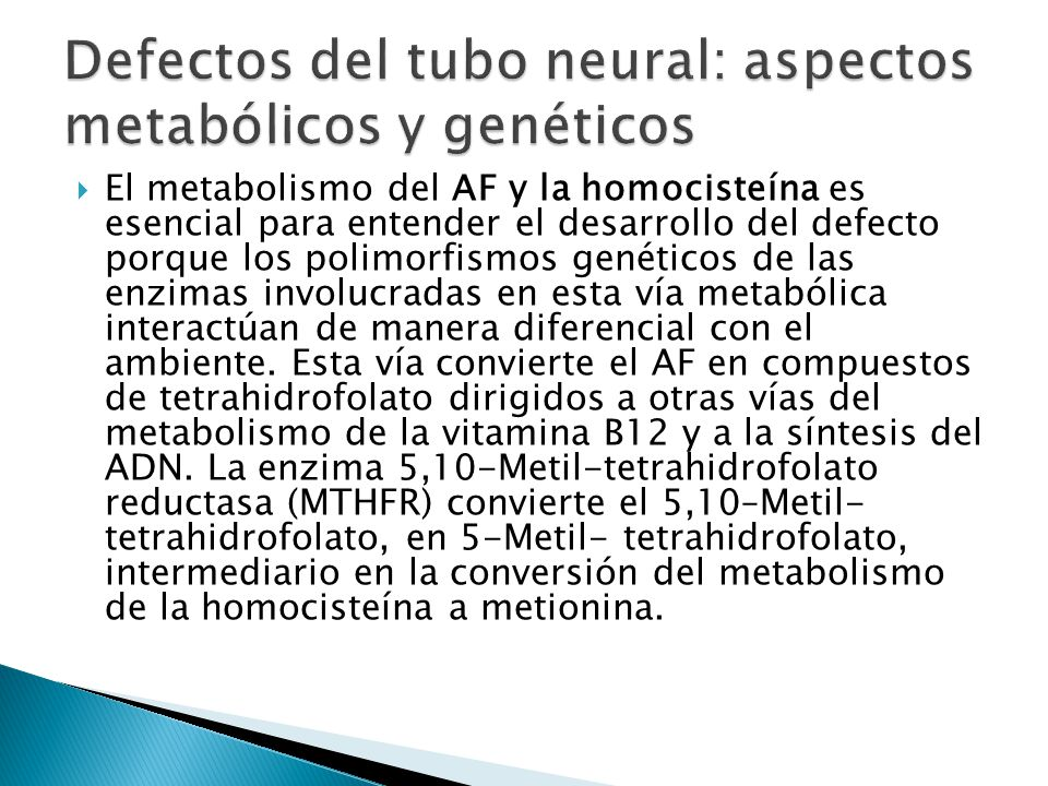 Defectos del tubo neural: aspectos metabólicos y genéticos