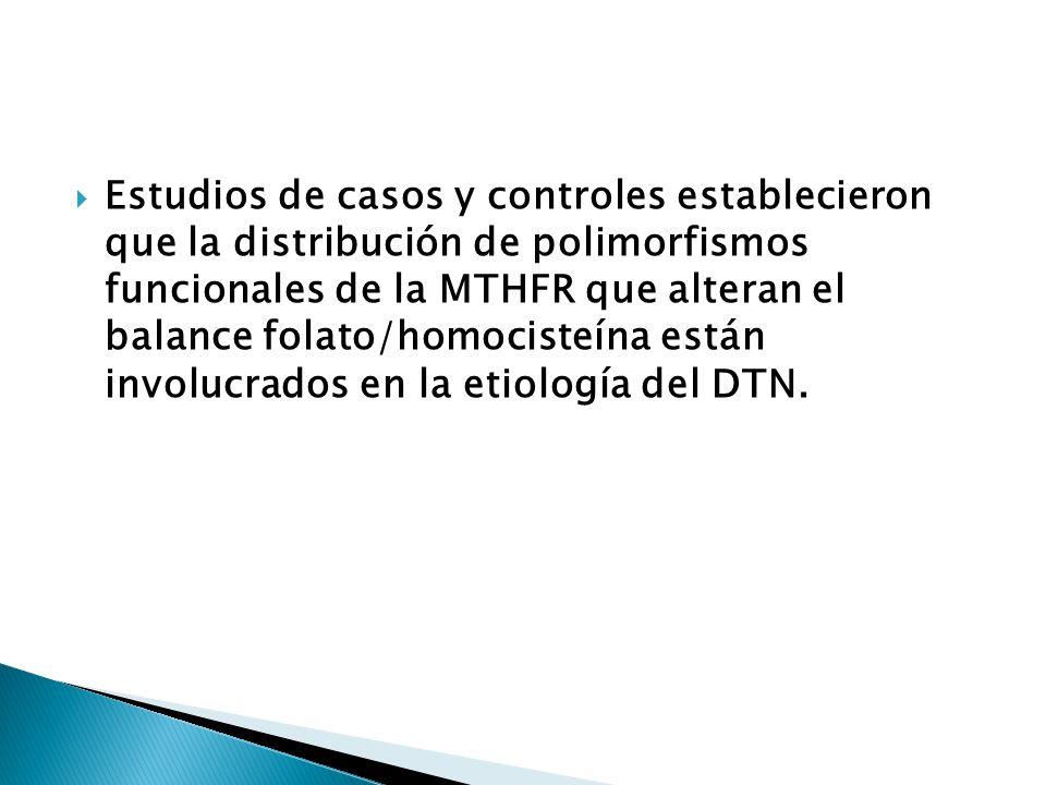 Estudios de casos y controles establecieron que la distribución de polimorfismos funcionales de la MTHFR que alteran el balance folato/homocisteína están involucrados en la etiología del DTN.