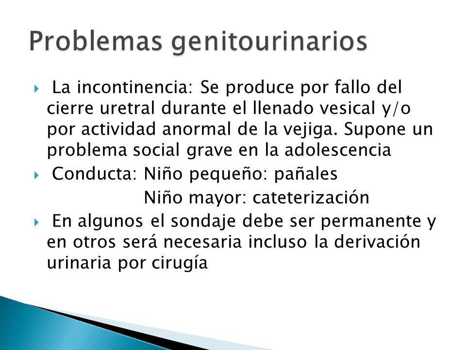 Problemas genitourinarios