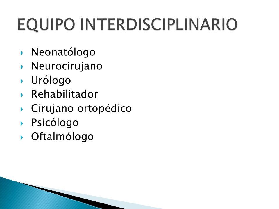 EQUIPO INTERDISCIPLINARIO