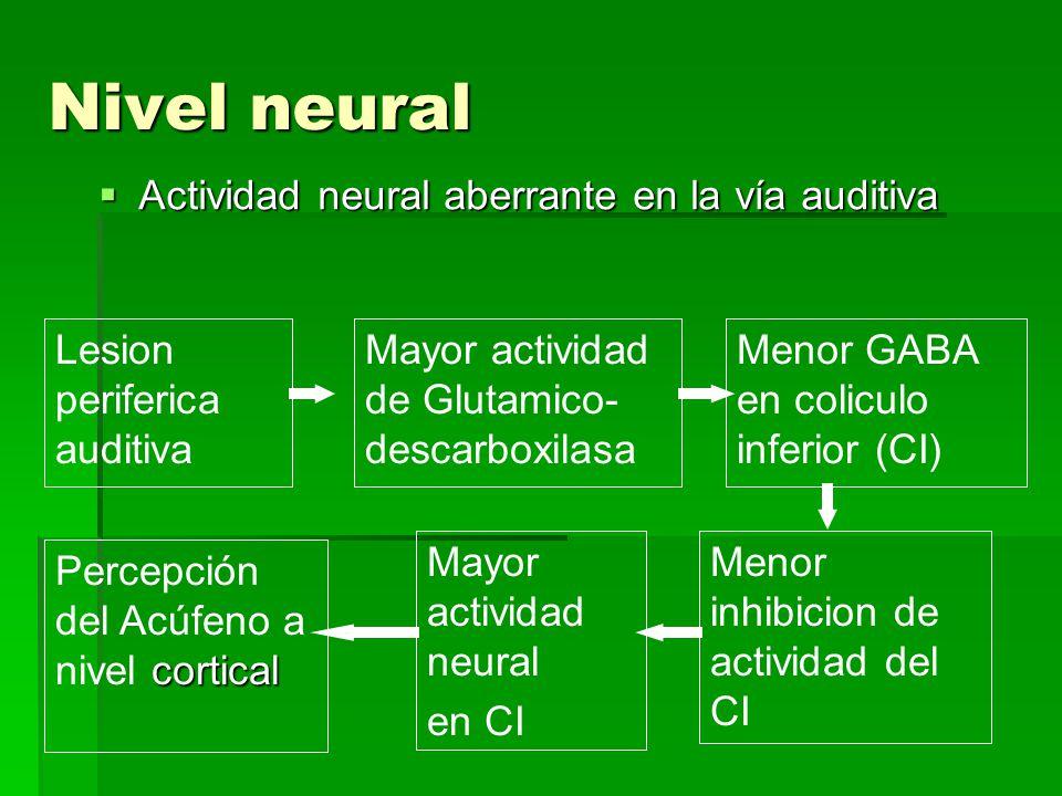Nivel neural Actividad neural aberrante en la vía auditiva