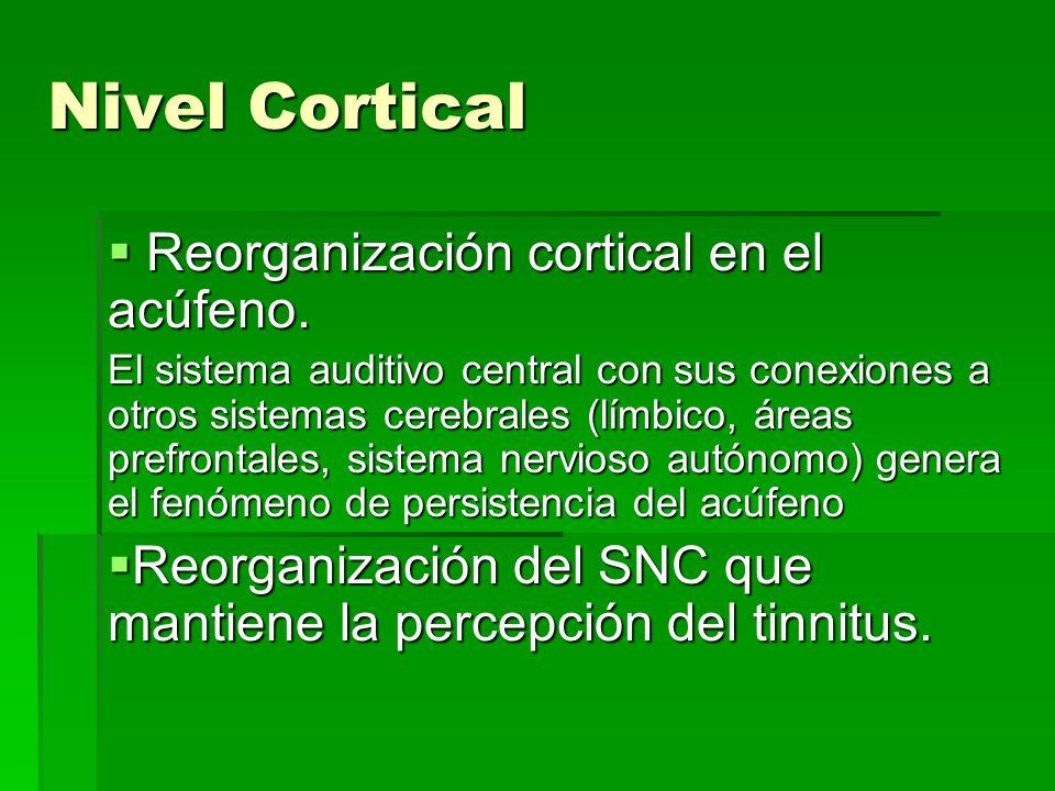 Nivel Cortical Reorganización cortical en el acúfeno.