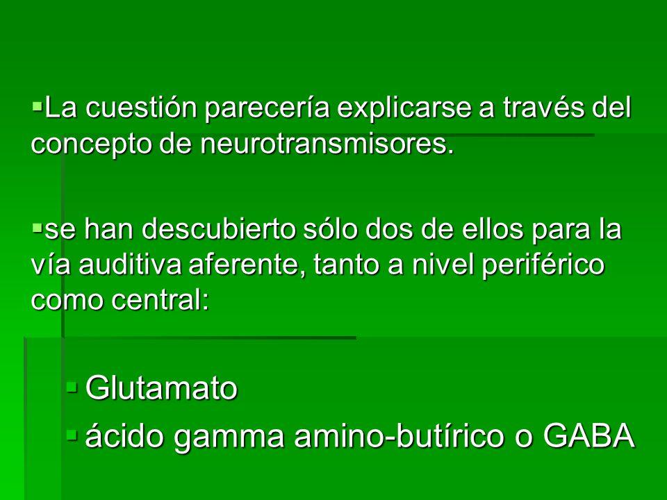 ácido gamma amino-butírico o GABA