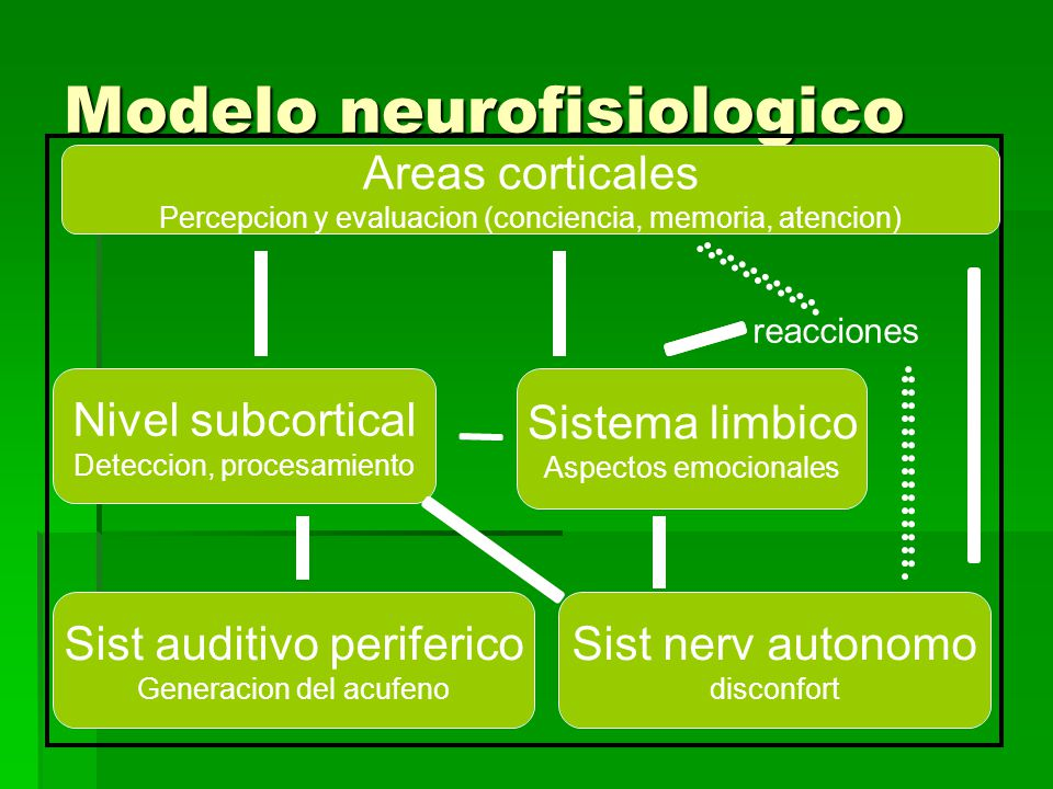 Modelo neurofisiologico