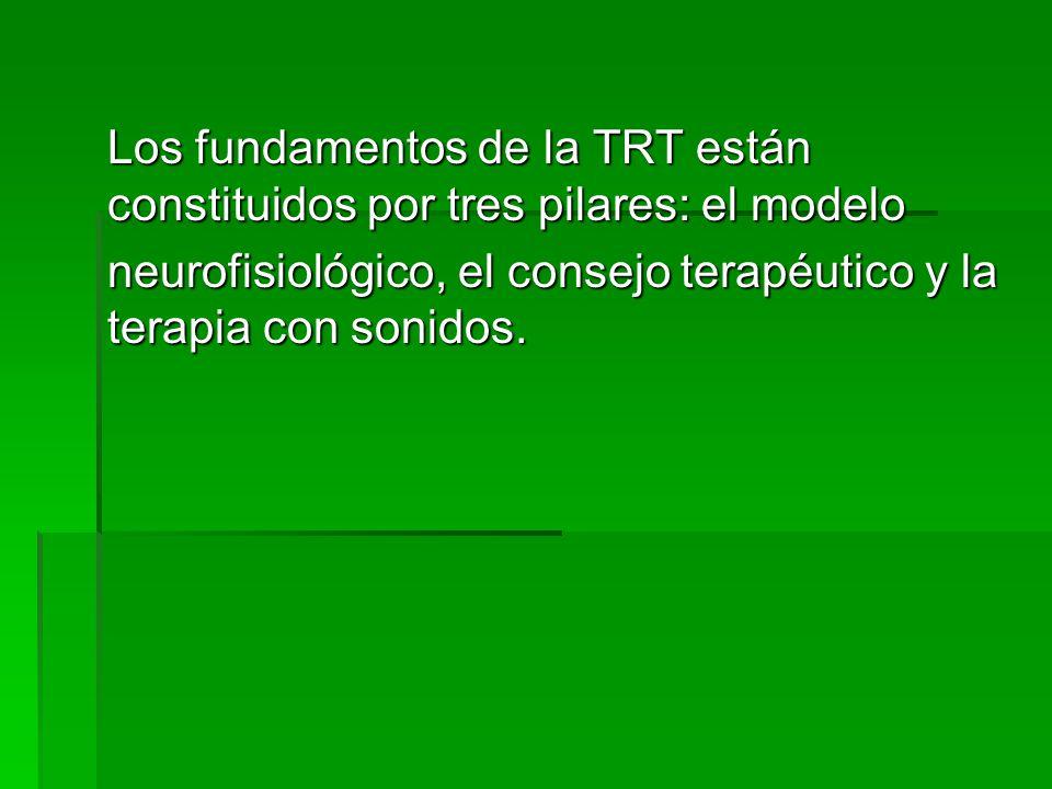 Los fundamentos de la TRT están constituidos por tres pilares: el modelo