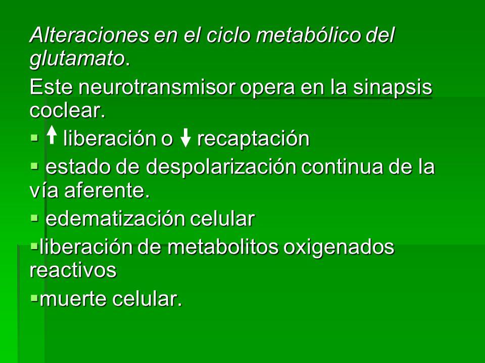 Alteraciones en el ciclo metabólico del glutamato.