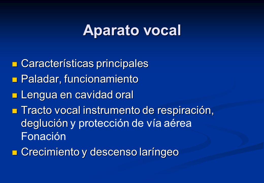 Aparato vocal Características principales Paladar, funcionamiento