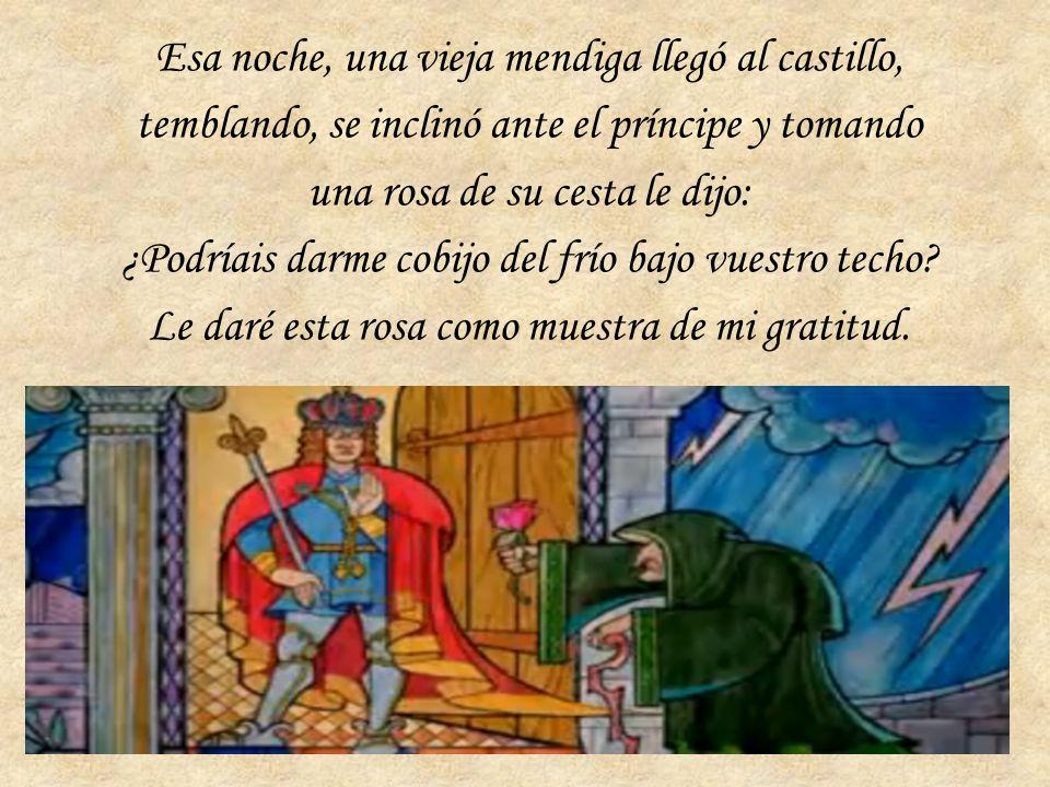 Esa noche, una vieja mendiga llegó al castillo, temblando, se inclinó ante el príncipe y tomando una rosa de su cesta le dijo: ¿Podríais darme cobijo del frío bajo vuestro techo.