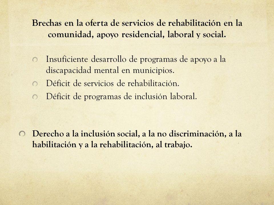 01/09/14 Brechas en la oferta de servicios de rehabilitación en la comunidad, apoyo residencial, laboral y social.