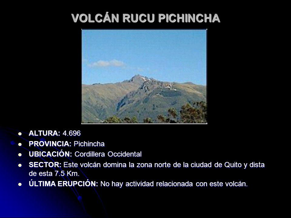 VOLCÁN RUCU PICHINCHA ALTURA: 4.696 PROVINCIA: Pichincha