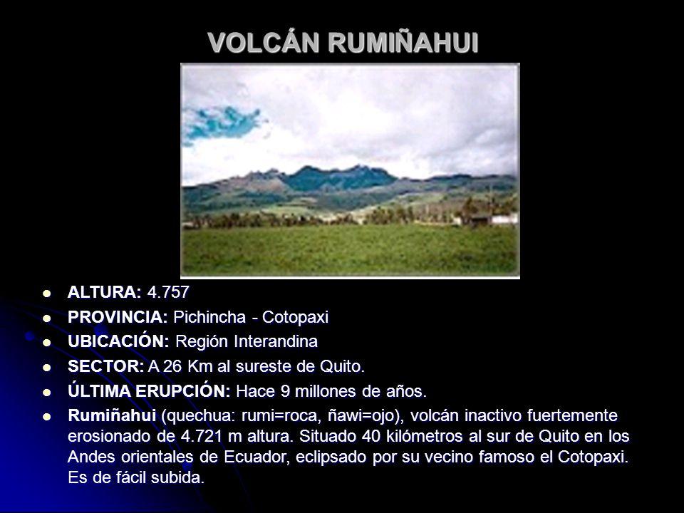 VOLCÁN RUMIÑAHUI ALTURA: 4.757 PROVINCIA: Pichincha - Cotopaxi