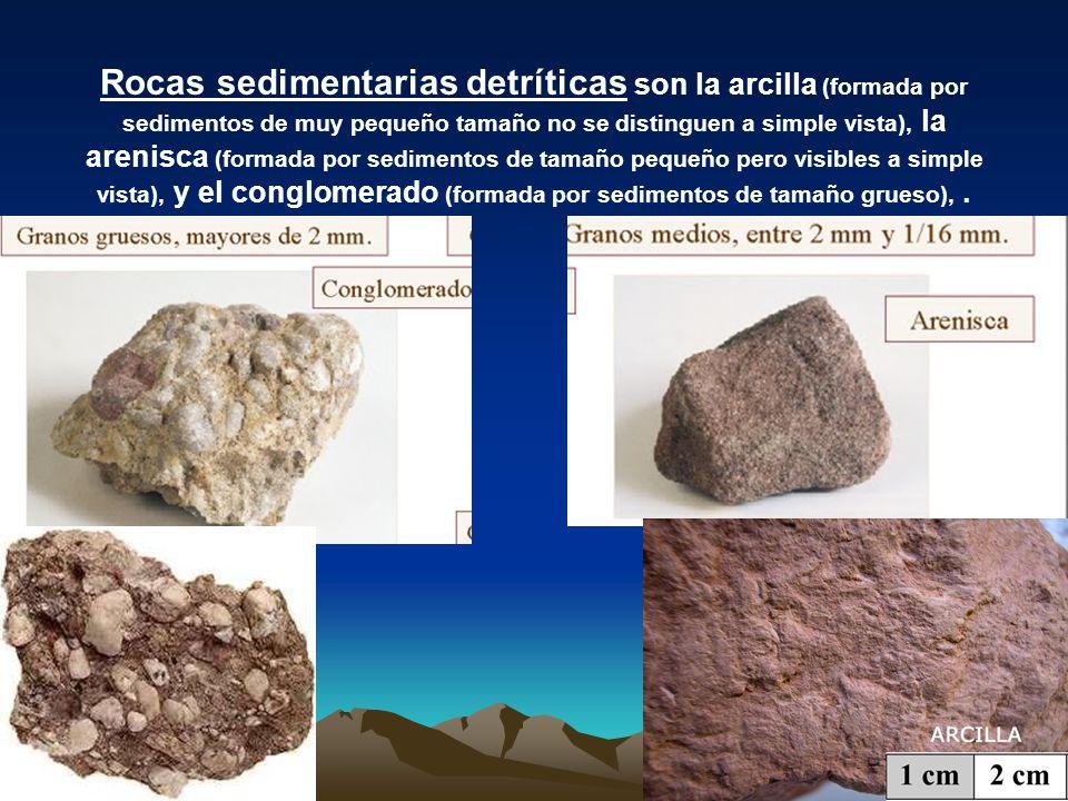 Rocas sedimentarias detríticas son la arcilla (formada por sedimentos de muy pequeño tamaño no se distinguen a simple vista), la arenisca (formada por sedimentos de tamaño pequeño pero visibles a simple vista), y el conglomerado (formada por sedimentos de tamaño grueso), .