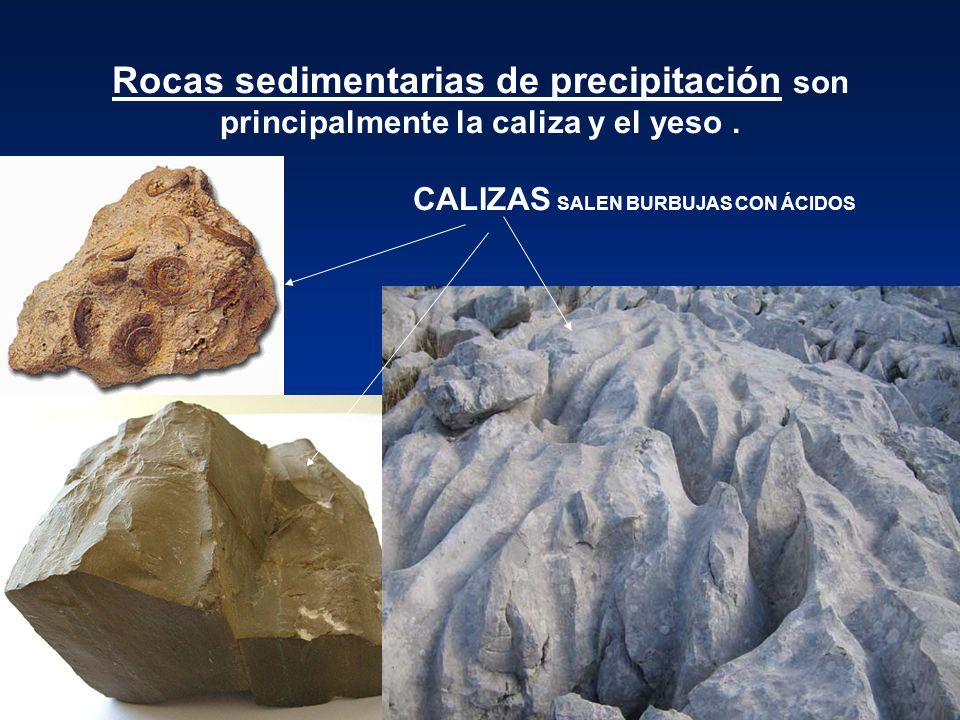 Rocas sedimentarias de precipitación son principalmente la caliza y el yeso .